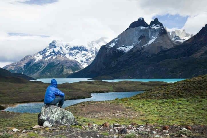 example brand management patagonia
